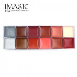 Paleta de 12 colores pintura grasa 60g