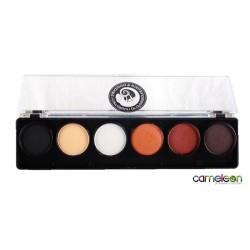 Dermaniac Paleta de 6 colores Cameleon 6x8g